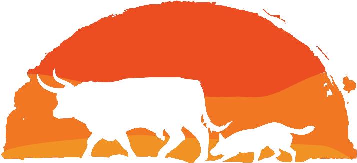 Australian Cattle Dogs - Byeyo Kennels(Perm) Reg.